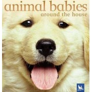 Animal Babies Around the House by Vicky Weber