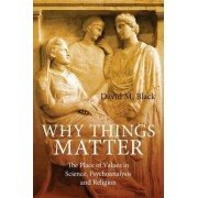 Why Things Matter by David M. Black