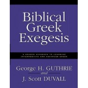 Biblical Greek Exegesis by George H. Guthrie
