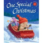 One Special Christmas by M Christina Butler