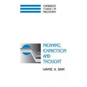 Meaning, Expression and Thought by Wayne A. Davis