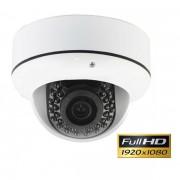 Caméra IP dome extérieure filaire professionnelle HD 1080P - LongSe