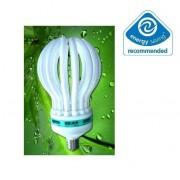 Bec Economic tip Bulb Floare Lotus Lumina Alba Rece E27 85W M
