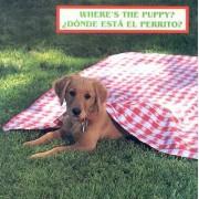 Where's the Puppy?/Donde Esta El Perrito? by Cheryl Christian