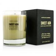Scented Candles - Sweet Ash 274g/9.7oz Ароматна Свещ - Sweet Ash