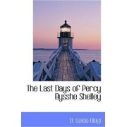 The Last Days of Percy Bysshe Shelley by D Guido Biagi