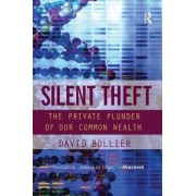 Silent Theft by David Bollier
