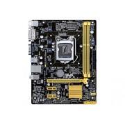 Asus Micro ATX DDR3 1066 LGA 1150 Motherboards H81M-K