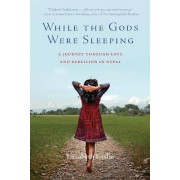 While the Gods Were Sleeping by Elizabeth Enslin