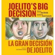 Joelito's Big Decision/La Gran Decision de Joelito by Ann Berlak