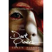 Dark Places by Shaun Allan