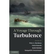 A Voyage Through Turbulence by Peter A. Davidson