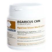 Agaricus CMN