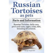 Russian Tortoises as Pets. Russian Tortoise by George Hoppendale