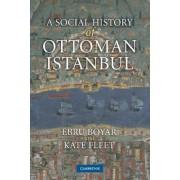 A Social History of Ottoman Istanbul by Ebru Boyar