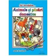 Sa invatam... Animale domestice - Carte de colorat