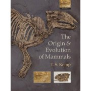 The Origin and Evolution of Mammals by Lecturer in Zoology and Curator of the Zoological Collections T S Kemp