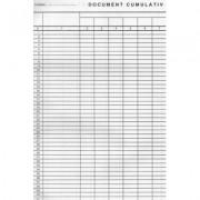 Document cumulativ A4 (vertical) 1164