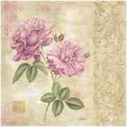 "Eurographics NIR1002 Stampa artistica ""Rose Scroll"" di N. Rabbett, 50,8x50,8 cm"
