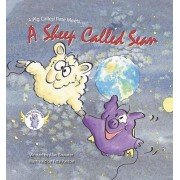 A Pig Called Pete Meets... a Sheep Called Sean by Alan Bowater