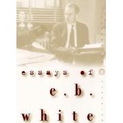 Essays of E.B. White by E. B. White