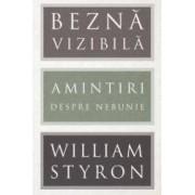 Bezna vizibila - William Styron