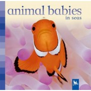 Animal Babies in Seas by Editors of Kingfisher