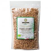 ≪ソル・レオーネ ビオ≫オーガニック エンマー小麦(乾燥)