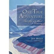 The One True Adventure by Joy Mills