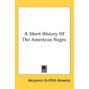 A Short History of the American Negro by Benjamin Griffith Brawley