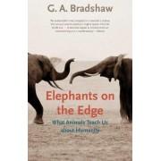 Elephants on the Edge by G. A. Bradshaw