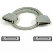 SCSI-II Kabel 1m