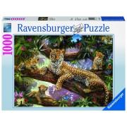 Ravensburger puzzle familie de leoparzi, 1000 piese