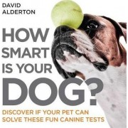 How Smart is Your Dog? by David Alderton