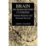 Brain Neurosecretory Cytokines by Armen Galoyan
