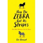 How the Zebra Got its Stripes by Barbara Mellor