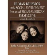 Human Behavior in the Social Environment from an African-American Perspective by Letha A. See