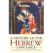 A History of the Hebrew Language by Angel Saenz-Badillos