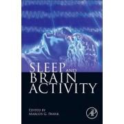 Sleep and Brain Activity by Marcos Gabriel Frank