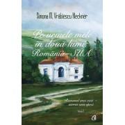Pe urmele mele in doua lumi: Romania-SUA. Romanul unei vieti - istoria unei epoci, Vol. 1