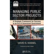 Managing Public Sector Projects by David S. Kassel