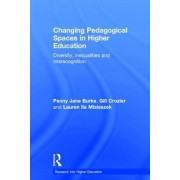 Changing Pedagogical Spaces in Higher Education: Diversity, Inequalities and Misrecognition