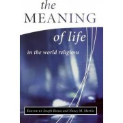The Meaning of Life in the World Religions by Nancy M. Martin