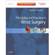 Principles and Practice of Wrist Surgery with DVD by David J. Slutsky
