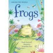 Frogs by Sarah Courtauld