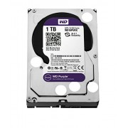 WD 1TB Purple Surveillance Internal Hard Drive  (WD10PURX)
