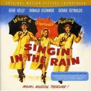 Nacio Herb Brown - Singin' In The Rain (0886976382926) (1 CD)