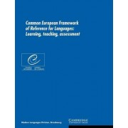 Common European Framework of Reference for Languages by Council of Europe