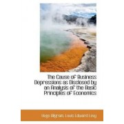 The Cause of Business Depressions as Disclosed by an Analysis of the Basic Principles of Economics by Hugo Bilgram