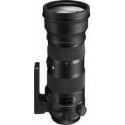 Obiectiv Foto Sigma 150-600mm f5-6.3 DG OS HSM Nikon Sports